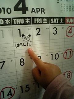panda-karenda-.jpg