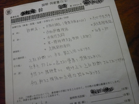 sinsansyo.JPG