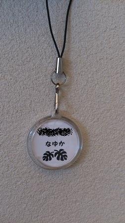 syaki-5.jpg