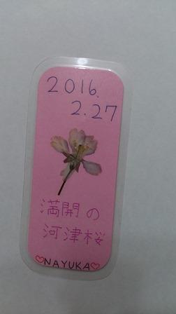 siori-5.jpg