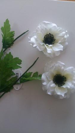 anemone-2.jpg