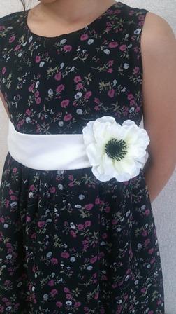 anemone-6.jpg