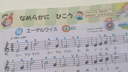 pianika-3.jpg